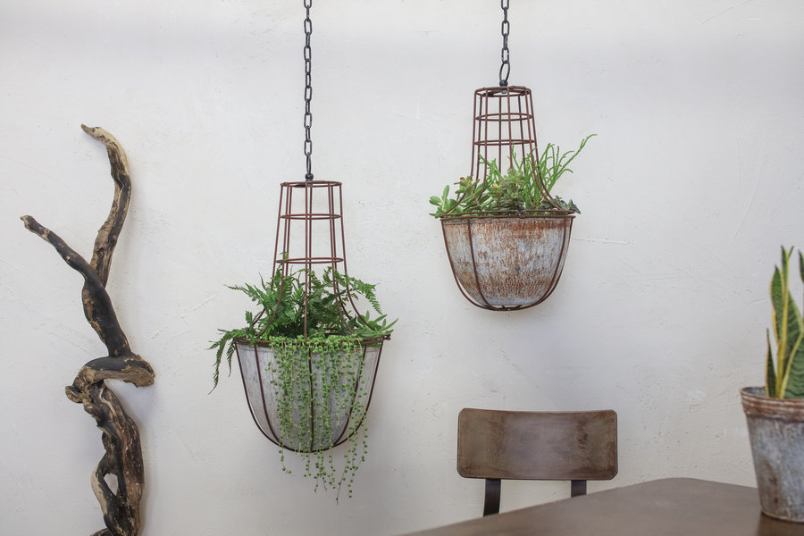 Caged Planter Medium